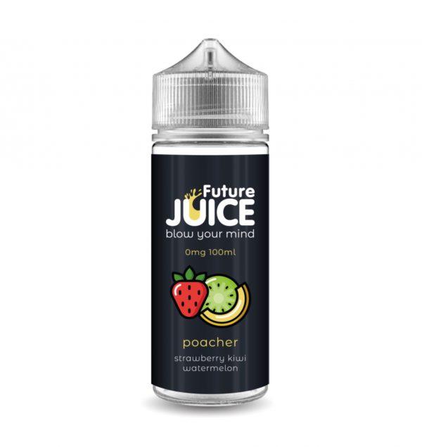 Future Juice 100ml